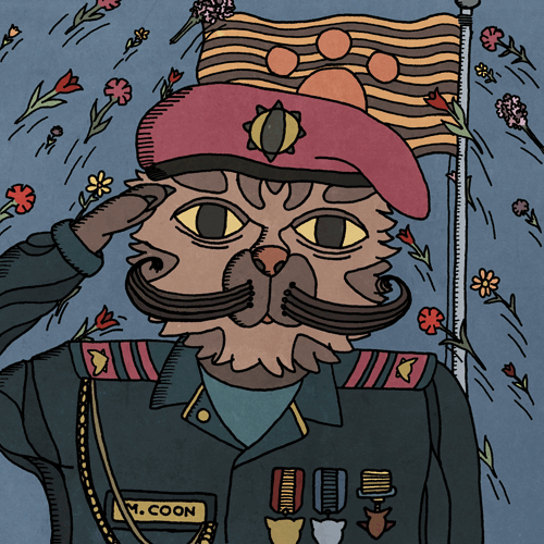 The Soldier Cat